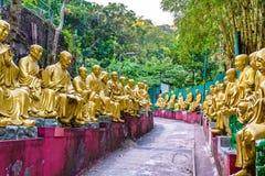 Статуи на пути к 10 тысяч монастырю Buddhas в Гонконге Стоковые Изображения RF