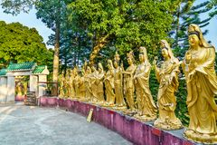 Статуи на 10 тысяч монастыре Buddhas в Гонконге Стоковое Фото