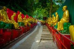 Статуи на 10 тысяч монастыре Buddhas в олове Sha, Гонконге, Китае Стоковое Фото