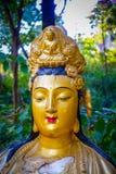 Статуи на 10 тысяч монастыре Buddhas в олове Sha, Гонконге, Китае Стоковые Фотографии RF