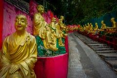 Статуи на 10 тысяч монастыре Buddhas в олове Sha, Гонконге, Китае Стоковое фото RF