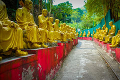Статуи на 10 тысяч монастыре Buddhas в олове Sha, Гонконге, Китае Стоковые Изображения RF