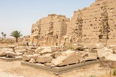Статуи перед египетским виском в Karnak стоковое фото rf