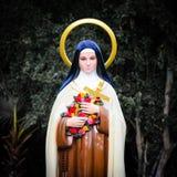 Статуи Mary Стоковое Фото