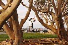 Статуя безоговорочной капитуляции Сан-Диего Стоковые Изображения