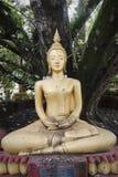 статуя Будды золотистая Лаоса Стоковая Фотография