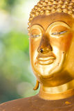 Статуя Будды золотистая. Стоковое фото RF