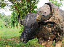 Статуя буйвола стоковая фотография rf