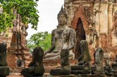 Статуя Будды в Wat Mahathat, загубленном виске в Ayuthaya, тайском Стоковые Изображения RF