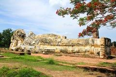 Статуя Будды гиганта в историческом парке Ayutthaya Стоковое Фото