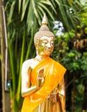 Статуя Будды золота Стоковые Изображения