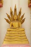 статуя Будды золотистая Будда и 7 голов змея, Стоковые Изображения