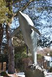 Статуя дельфина на мистическом аквариуме Стоковая Фотография RF