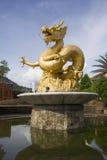 статуя дракона золотистая Стоковые Фотографии RF