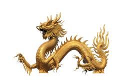 статуя дракона золотистая Стоковое Изображение RF