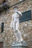 Статуя Дэвида Микеланджело Стоковые Изображения