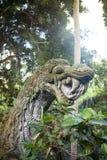 Статуя демона на Бали Стоковые Фото