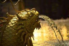 Статуя китайских рыб дракона Стоковое Изображение RF