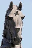 статуя лошади головки бой детали Стоковые Изображения RF
