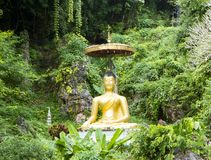 Статуя моля монаха стоковые изображения rf