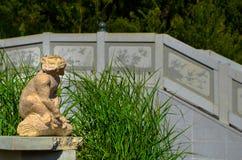 Статуя обезьяны бездельничает одно Стоковые Фото