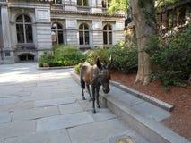 Статуя осла Демократической партии, старый двор здание муниципалитета, улица школы, городской Бостон, Массачусетс, США Стоковая Фотография RF