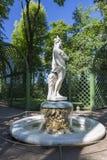Статуя от собрания мраморных скульптур итальянскими мастерами последнее XVII - раньше столетия XVIII в лете садовничают стоковое фото rf