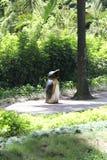 Статуя пингвина в зоопарке Сайгона Стоковое Изображение RF