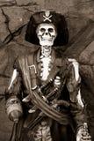 Статуя пирата Стоковые Изображения