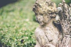 статуя сада flowerpot коровы смешная Стоковые Изображения RF