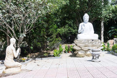Статуя сидеть белизна и монах Будды Стоковые Изображения RF