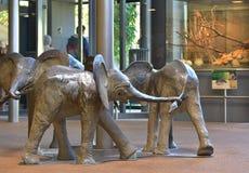 Статуя 3 слонов Стоковые Изображения
