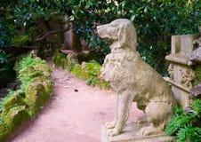 статуя собаки Стоковое Изображение RF