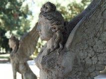 Статуя сфинкса в Риме Стоковое фото RF