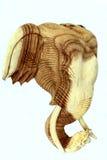 Статуя слона головная Стоковые Фотографии RF