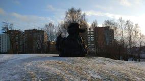 Статуя утки Стоковая Фотография