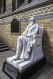 Статуя Чарлза Дарвина в музее естественной истории Лондона стоковые фото