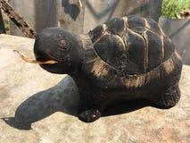 Статуя черепахи Стоковое Изображение