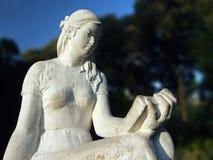 статуя чтения Стоковые Фотографии RF