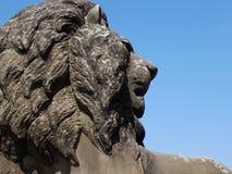 Статуя льва вне St Georges Hall в Ливерпуле Стоковые Изображения RF