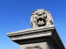 Статуя льва в Будапеште Стоковое Фото