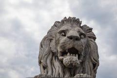 Статуя льва в Будапешт Стоковые Фото