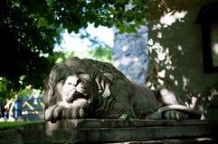 Статуя льва в улицах Львова, Украины Стоковое Изображение RF