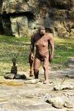 Статуя Afarensis австралопитека на скалистой земле Стоковые Фото