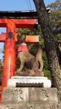 Статуя Fox в Fushimi Inari Стоковые Изображения