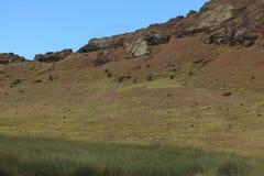 Статуя Moai на острове пасхи Стоковое фото RF