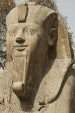 Статуя Ramsis II Стоковые Фотографии RF