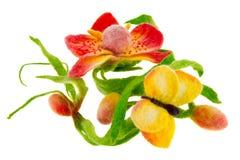 Статья от покрашенных бабочки и орхидеи шерстей Стоковое Изображение RF