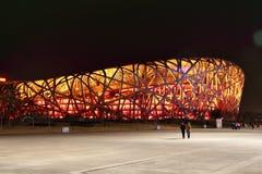 стадион гнезда птицы в фарфоре Стоковое Изображение
