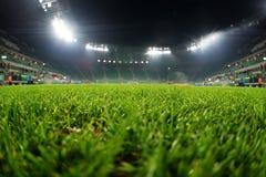 Стадион, конец вверх на траве Стоковые Фото